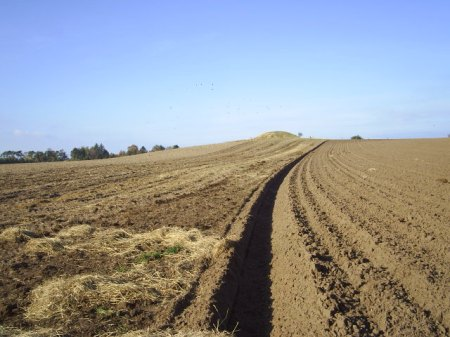 Seven Highs, Melby. Ploughed field anno 2009. Under one of the burial mounds archeoligist have founds a ritual ploughing the plough from Stone Age (3900-1700 B.C.) and Bronze Age (1700-500B.C.)In the background of the picture: one of the seven burial mounds in melby. called: Arden.